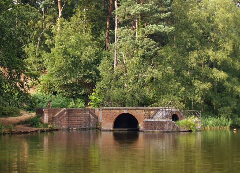 Rushmere Country Park image