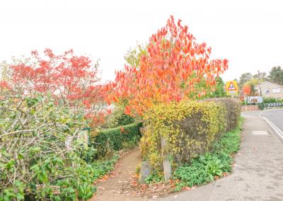 Millennium Gardens Entrance