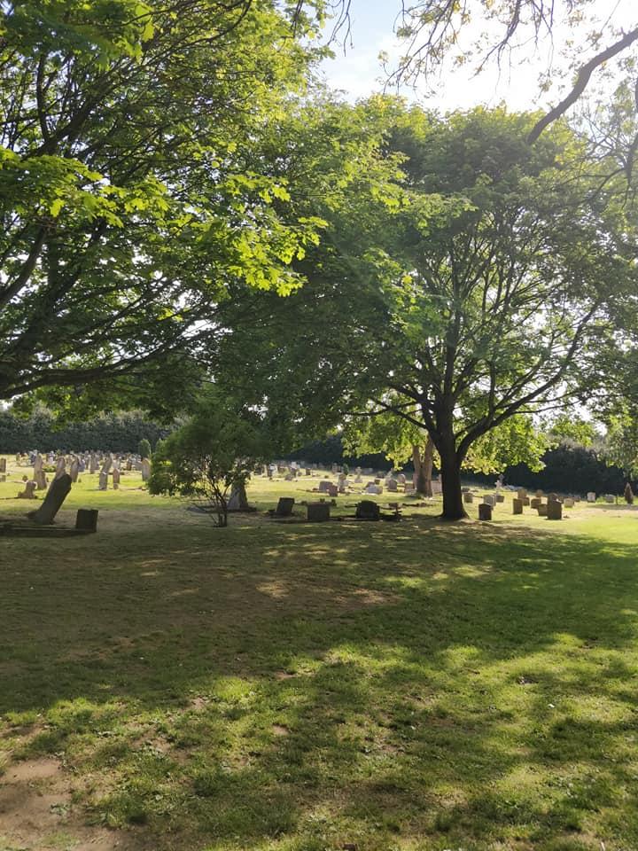 Woodland view at Heath and Reach Parish Cemetery