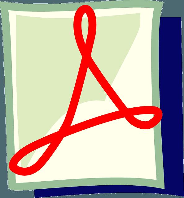 pdf icon graphic